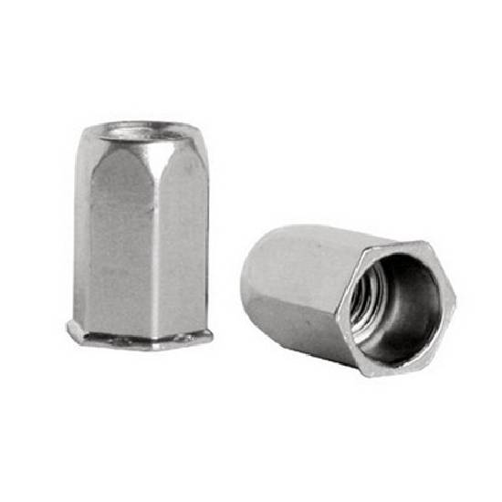 MS Small Head Rivet Nut Exporters